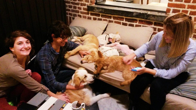 WAF, le 1er café à chiens d'Europe